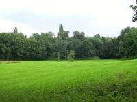 Jedna z možných lokalit pro psí park v Hradci Králové 3