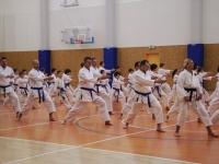 Tréning karate